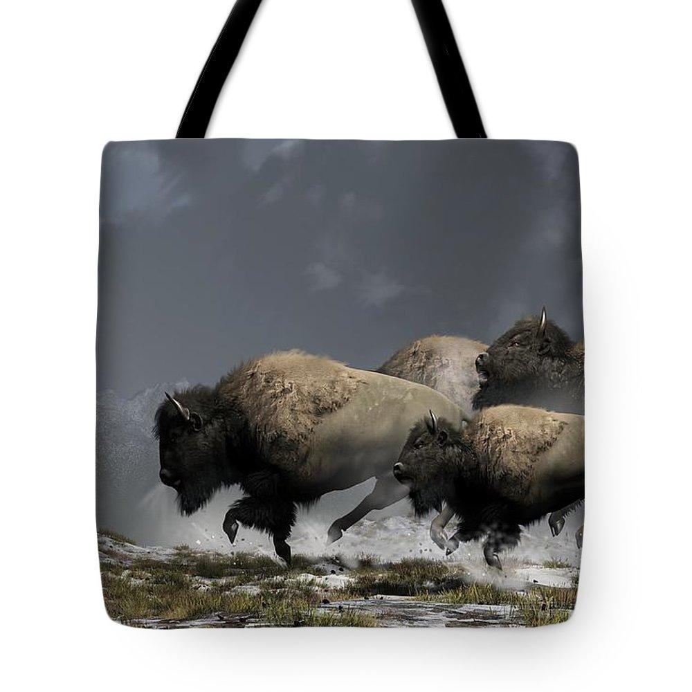 Buffalo Stampede
