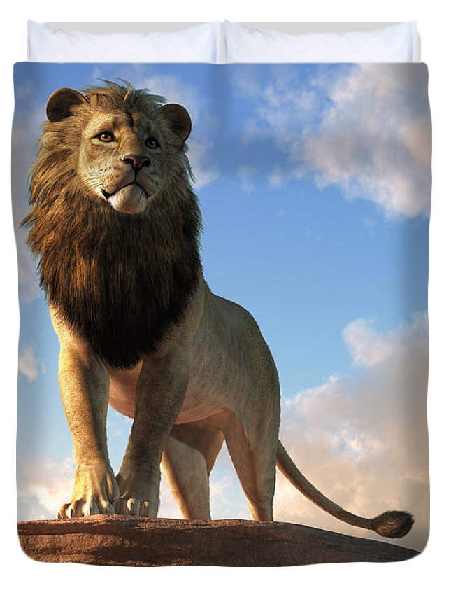 Lion - King of Beasts