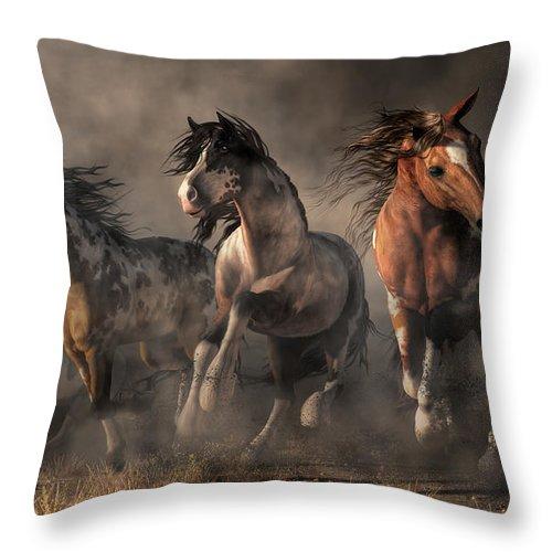American Paint Horses