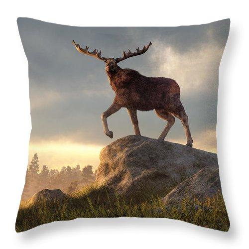 Moose At Dawn