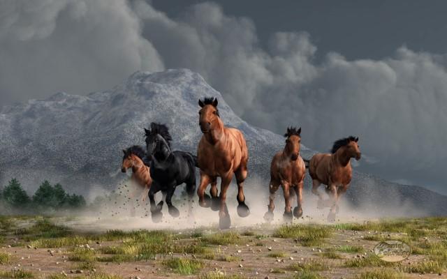 Thunder on the Plains